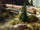 D&RGW in Donner